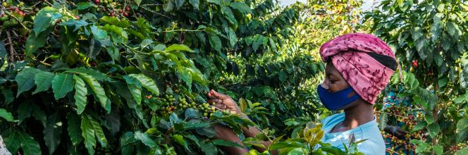 Nyamurinda : les femmes au cœur du développement durable au Rwanda