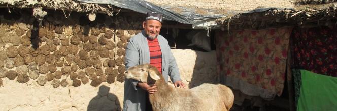 Étude de cas: Furuz, une IMF tadjike créatrice d'opportunités pour des petits agriculteurs vulnérables