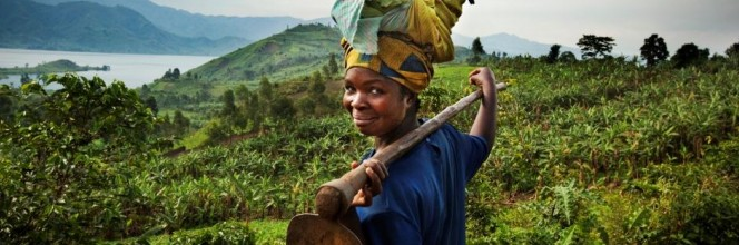 Investing in microfinance and fair trade