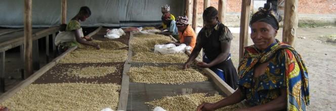 La contribution d'Alterfin aux Objectifs de Développement Durable