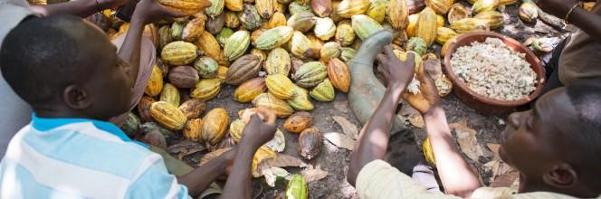 Eerlijke handel en duurzame familiale landbouw